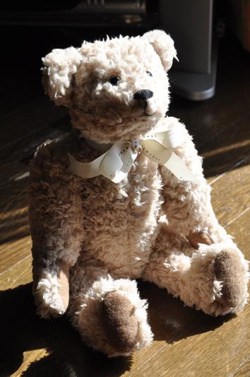 teddy1.jpg