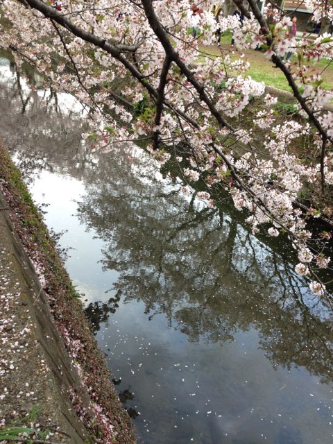hikijikawa_4.jpg